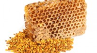 Honey honeycombs and pollen