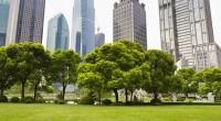 espace vert en ville