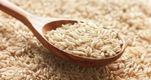 proteine de riz