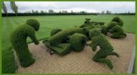 jardin détails
