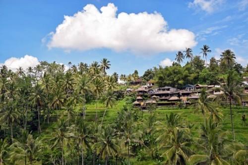 Sejour-Bali 1