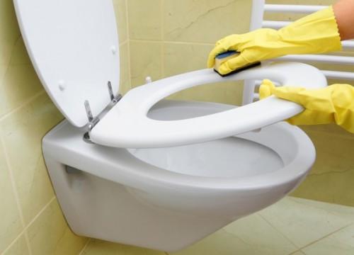 Comment détartrer ses WC