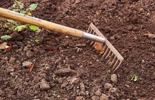 râteau jardinage désherbage
